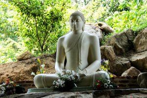 Groepsreis naar Sri Lanka