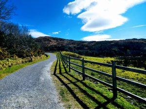 Groepsreis naar Ierland