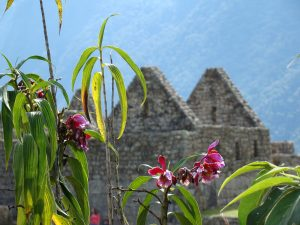 Groepsreizen naar Peru
